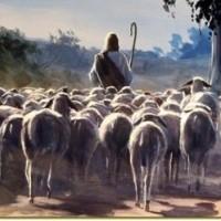 """""""Have life abundantly"""" John 10:1-10"""