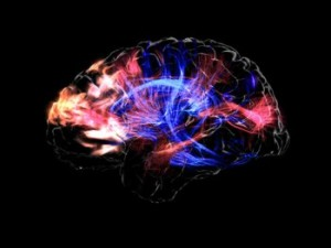 Brain for God