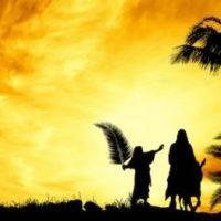 """This misunderstood Jesus"" Luke 19:28-40"